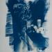 cyanotype-51